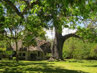1 bedroom Bed and Breakfast with Deck in Diani - Diani vacation rentals