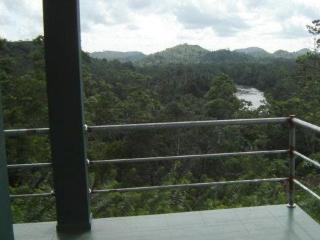06 Rooms Tea plantation bungalow - Lathrup Village vacation rentals