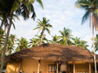 Palm Villa Biyagama - Biyagama vacation rentals