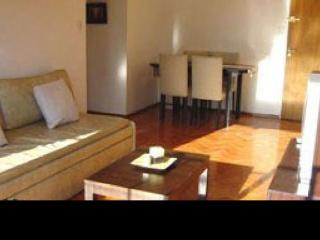 Juncal & Oro - Buenos Aires vacation rentals