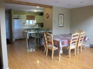 4 Bedrooms next to Camelback Ski & Waterpark - Tannersville vacation rentals