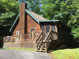Excellent location .. BearyTale! Availability! - Townsend vacation rentals