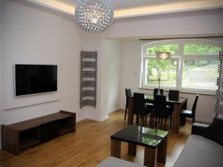 Luxury apartment in the center of Gdynia - Gdynia vacation rentals
