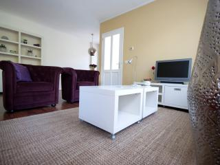 Romantic 1 bedroom Condo in Oudemirdum - Oudemirdum vacation rentals