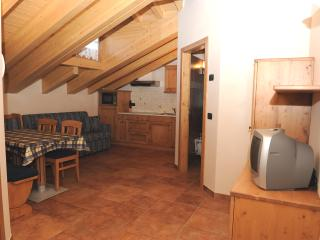 Nice Condo with Internet Access and Wireless Internet - Livigno vacation rentals