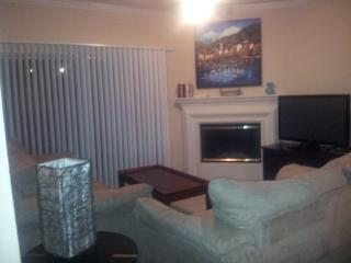 Great Apartment in Addison1AD56652021 - Addison vacation rentals