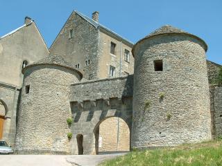 Maison médiévale de charme en Bourgogne - Flavigny-sur-Ozerain vacation rentals
