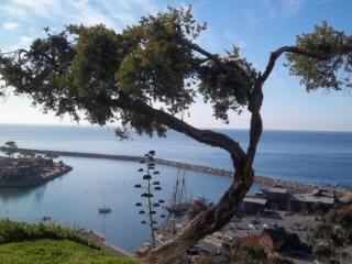 The Harbour House  .  .  .by the Sea - Dana Point vacation rentals