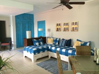 Cabarete Kite Beach very nice 1 bdrm from $60 - Cabarete vacation rentals