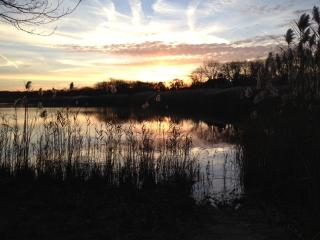Lakeside Cottage, Walk to Beach. Beautiful Sunsets - Southold vacation rentals