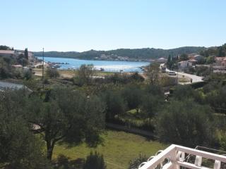 Milena Apartment A in Tisno - Tisno vacation rentals