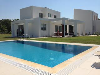 Nice Villa with Internet Access and A/C - Loutra Kyllinis vacation rentals