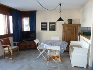 Scierie C Bisse n° 236 (05) - Vercorin vacation rentals