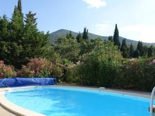 Beautiful and confortable villa with pool and view - Montesquieu des Alberes vacation rentals