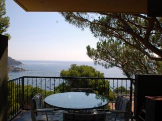 Apartment Calella de Palafrugell - Calella De Palafrugell vacation rentals