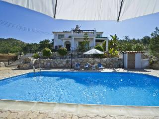 Beautiful 3bdr villa,spectacular sea views,privacy - Argaka vacation rentals