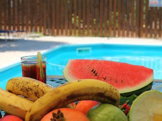 3 bedroom villa close to Latchi - Neo Chorion vacation rentals