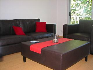 Palermo Hollywood, one bedroom apartment with Jacuzzy, Swimming pool and BBQ. - Buenos Aires vacation rentals