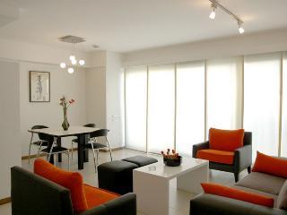 Departamento de 2 dormitorios en Palermo Soho, Edificio con amenities - Buenos Aires vacation rentals