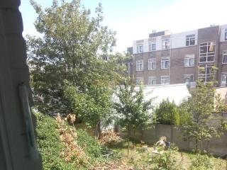 Cosy Apartment near The Hague City Center - The Hague vacation rentals