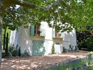 Mas des Lavandes charming house in  Provence - Riez vacation rentals