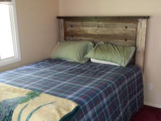 hunter ski house 4 bedrooms walk to mt - Hunter vacation rentals