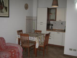 Gorgeous Apartment with Refrigerator and Linens Provided - Florence vacation rentals