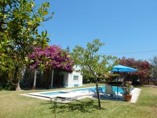 Great family holiday home, with guesthouse - Azeitao vacation rentals