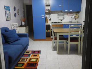 La casa di Ortensia wi-fi free - Parma vacation rentals