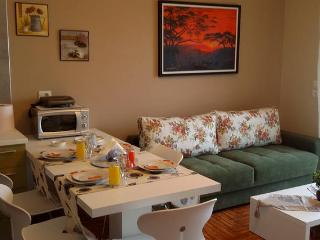 Seaside Luxury Apartment D - Sarande vacation rentals