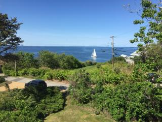 Ocean Views on the Cliffs of Maine - Cape Neddick vacation rentals