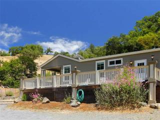 Nice House with Internet Access and Dishwasher - Cazadero vacation rentals