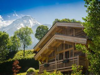 BlackRock Ski Lodge - Les Houches vacation rentals