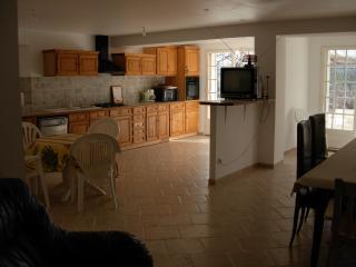 Nice Villa with Internet Access and Mountain Views - Sainte-Anastasie-sur-Issole vacation rentals