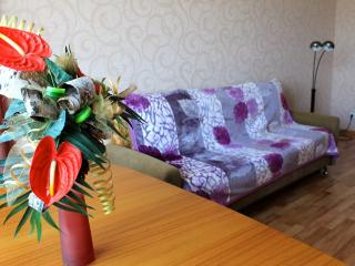 Business Class apartment - Khabarovsk vacation rentals
