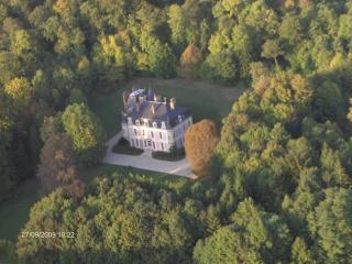 Castle 'des Tertres', luxury but very affordable - Mussy-sur-Seine vacation rentals