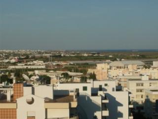 Four Bedroom Apartment in Faro - Faro vacation rentals