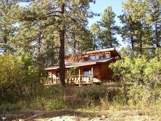 La Plata Mountains Cabin - Nestled in the Pines - Mancos vacation rentals