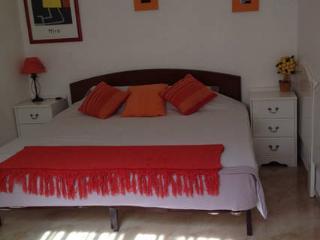 B&B Costa Adeje Tenerife Sur - Costa Adeje vacation rentals