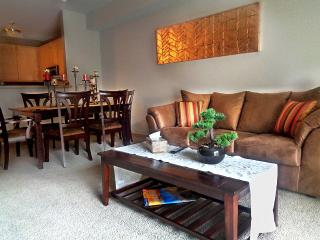 Stylish 2Br Condo  w/ Lot of Amenities & Balcony on Light Rail - Minneapolis vacation rentals