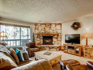 Atrium 108 - Shuttle to Lifts/Walk to Town - Breckenridge vacation rentals