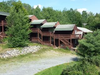 Athol Lodge Cabins - Family Suites 1 & 2 - Lake George vacation rentals