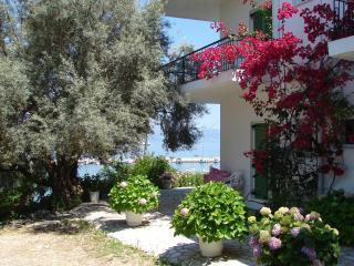 Sea front apartments and studios in Nikiana - Nikiana vacation rentals