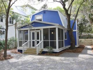 Cozy Seagrove Beach House rental with Internet Access - Seagrove Beach vacation rentals
