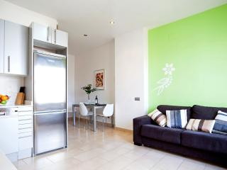 Mozart - one bedroom with terrace apartment - Barcelona vacation rentals