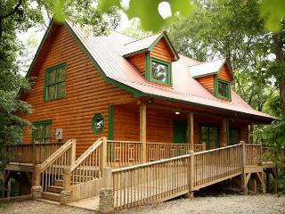 Beautiful Cabin with Internet Access and Dishwasher - Helen vacation rentals