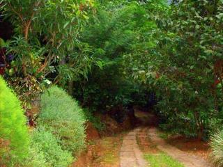 03 Bedroom Bungalow in kandy - Makuldeniya vacation rentals