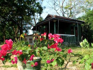 Cabanas in Kataragama - Kataragama vacation rentals