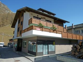 Nice Condo with Internet Access and Television - Saas Grund vacation rentals