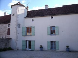 Spacious 17th century stone house, 5 bedrooms - Chatillon-sur-Seine vacation rentals